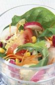 Healthy Recipes for Women Salads